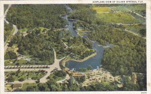 Florida Silver Springs Airplane View Curteich