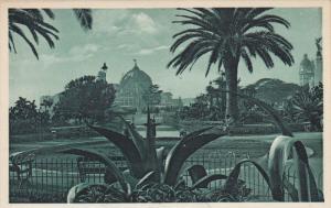 NICE, Alpes Maritimes, France, 1900-1910's; Albert 1st Garden