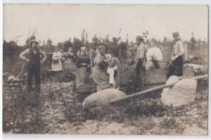 RPPC - Harvesting ? in NY