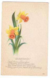 Easter Spring Daffodils Narcissus Vntg Karle Poem Postcard