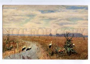 224633 RUSSIA Brovar storks desert Richard #754 HUNTING old