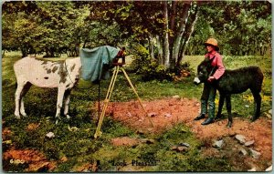 Vintage 1910s Animal Comic Postcard Horse Taking Photo of Boy & Burro / Camera