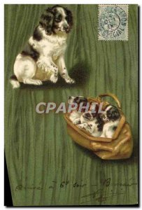 Postcard Old Dog Dogs Puppy