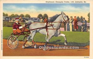Greyhound, Champion Trotter Lexington, Kentucky, KY, USA Unused
