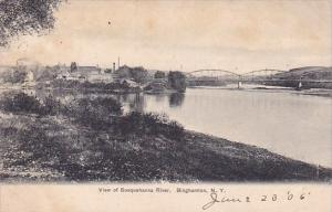 New York Binghamton View Of Susquehanna River