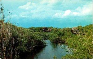 Postcard Marsh Scene Boardwalk Everglades National Park Florida Unposted 1503