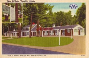 THE WHITE TRELLIS MOTEL NORTH CONWAY, NH. Bob and Norma Lucy, owners 1956