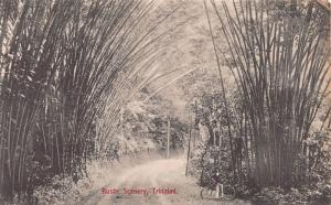 Rustic Scenery, Trinidad, B.W.I., Early Postcard, Unused
