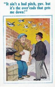 Newspaper Vendor Seagulls Dropping Poos Turds Comic Humour Postcard