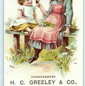 c1880s Clinton MA Grand Opening H.C. Greeley Cloaks Furs Trade Card Bufford C10