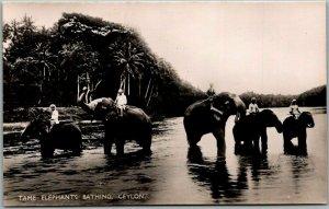 Vintage SRI LANKA Real Photo RPPC Postcard Tame Elephants Bathing, CEYLON