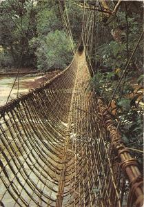 BR28152 Gabon le pont de lianes de pibara