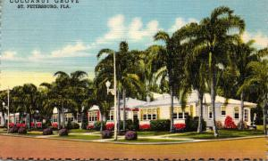 Florida St Petersburg Cocoanut Grove Motor Hotel Curteich