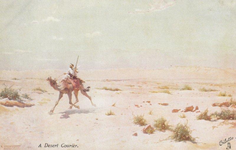 EGYPT , 00-10s , A Desert Courier : TUCK 7944