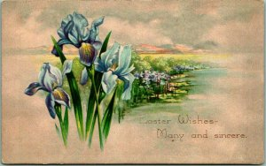 Vintage GIBSON Greetings Postcard Easter Wishes - Many & Sincere 1910 Cancel