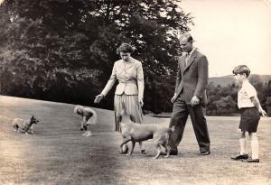 Royalty Royal Family Balmoral Elisabeth II Philip Children Dogs