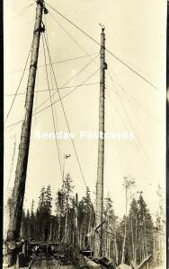 Washington, Rail Line, Tall Poles with Pulleys, Logging Lumbering (1910s) RPPC