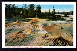 Paint Pots at the Thumb,Yellowstone National Park