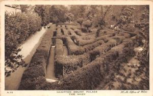 Hampton Court Palace The Maze