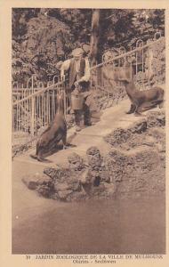 Mulhouse, France , 1910s ; Jardin Zoologique de la Ville de Mulhouse, Otaries -