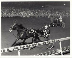 MEADOWLANDS Harness Horse Race , FARM KING winner, 1985