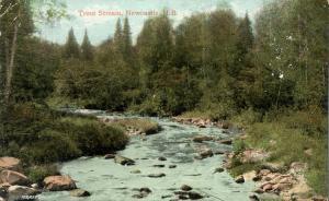 Trout Stream at Newcastle NB, New Brunswick, Canada - pm 1909 - DB