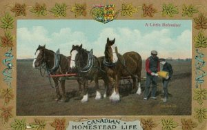 Homestead Life , Canada , 1900-10s ; A little Refresher