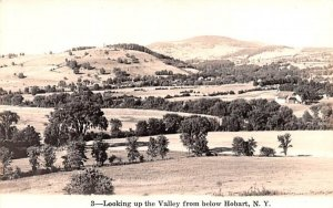 Looking up the Valley in Hobart, New York