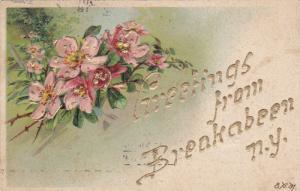 BREAKABEEN, New York, PU-1916; Greetings From Breakabeen