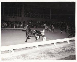 BATAVIA DOWNS, Harness Horse Race, MAYNARD'S LAST Wins, 1980