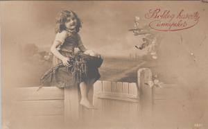 Hungary lovely girl on a fence Easter greetings 1914 postcard