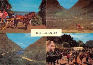 Killarney multiviews Lake Horses The Rugged Gap of Dunloe