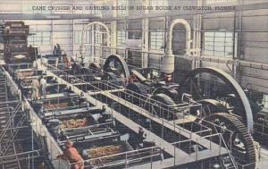 Florida Clewiston Cane Crusher and Grinding Rolls In Sugar House Curteich