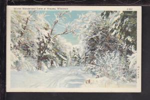 Winter Wonderland Scene at Wausau,WI Postcard