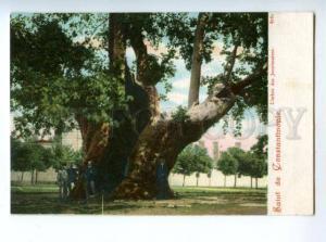 147167 TURKEY Salut CONSTANTINOPLE Vintage undivided postcard