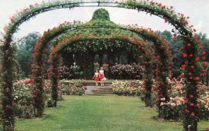 CT - Hartford, Elizabeth Park Rose Garden