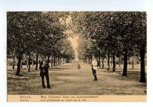 126576 BULGARIA VARNA in city garden Vintage postcard