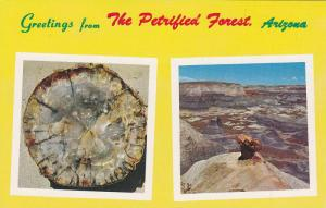 Petrified Forest Arizona , 40-60s