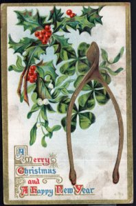 A Merry Christmas A happy New Year Turkey Bone and Holly Embossed - pm1910 - DB