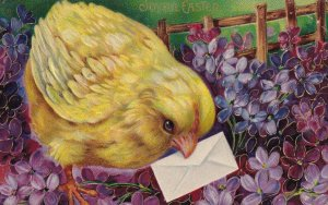 EASTER PU-1910; Chick with envelope in field of Violets, Gold details