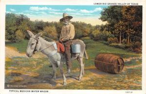 Lower Rio Grande Valley Texas~Mexican Water Wagon~Gardners Studio Postcard