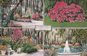 Alabama Mobile Scene At Bellingrath Gardens