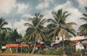 MIAMI BEACH, Florida, 1940-60s; Olney Inn