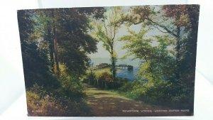 Vintage Postcard Kewstone Woods Weston Super Mare 1971