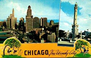 Illinois Chicago The Windy City Skyline
