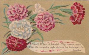 Flowers Carnations Best Of friends