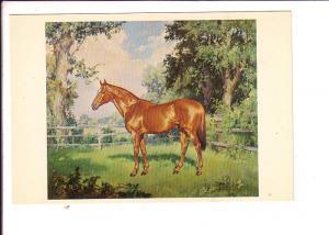 Konrad Ignar, Fair Play, Race Horse