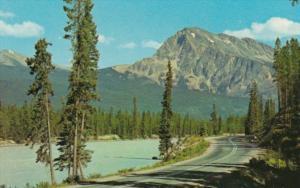 Canada Mount Hardisty and Athabasca River Jasper National Park Alberta