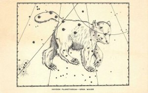 Hayden Planetarium Ursa Major Constellation Astronomy New York Vintage Postcard