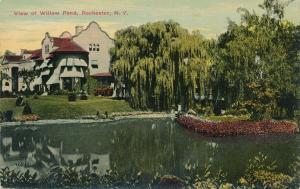 Willow Trees at Willow Pond, Rochester, New York - DB